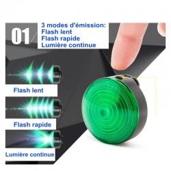 Lampe LED True Love vert