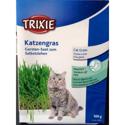Herbe à chats Trixie 100 grs