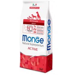 Croquettes Chien Active 12 kg Monge