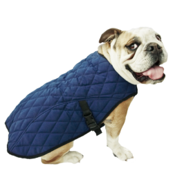Cooling Pet JACKET Taille M