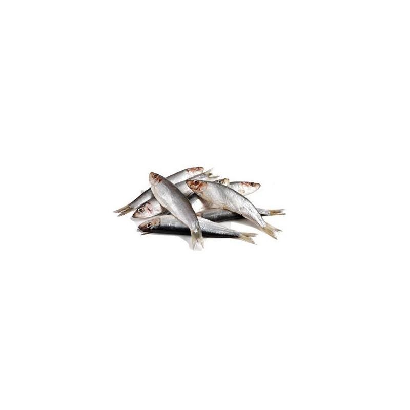 Barf Lyon : poissons Sprats séparés 1 kg