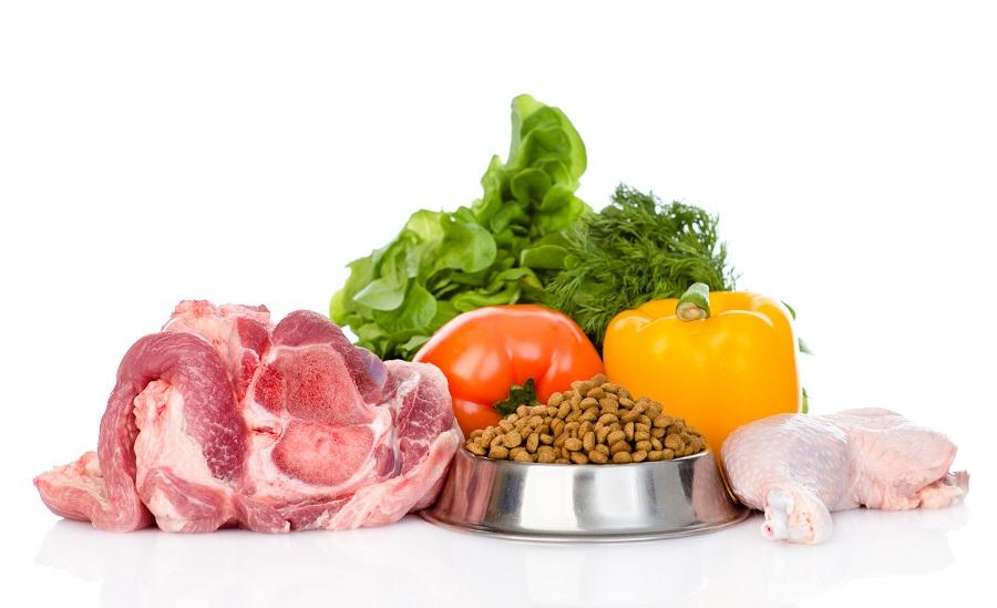Alimentation naturelles chiens chats ? L'expression est-elle légale ?