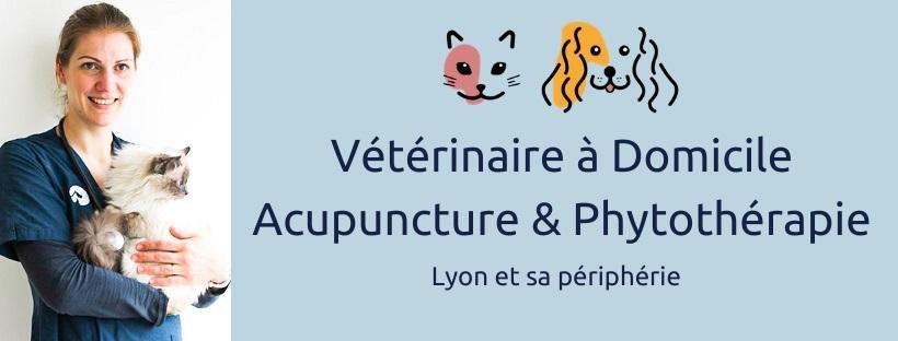 Vétérinaire Lyon
